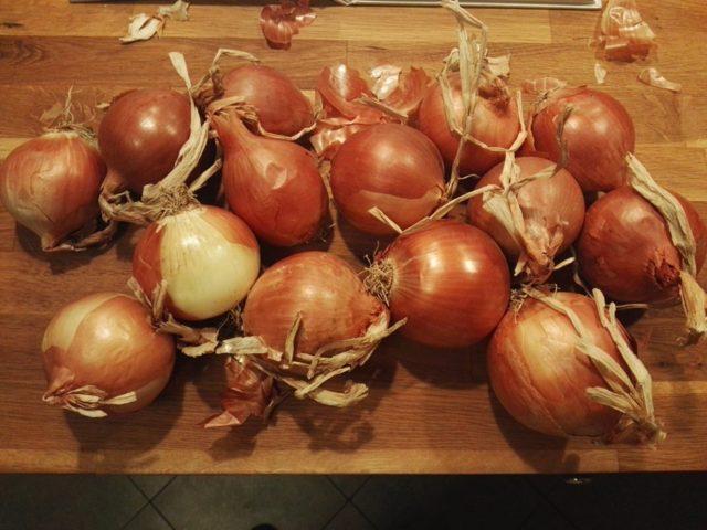 Cipolle per la Genovese