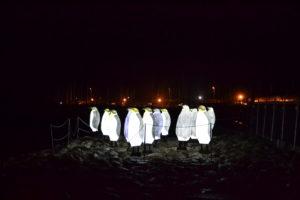 Litorale di Salerno - Pinguini illuminati