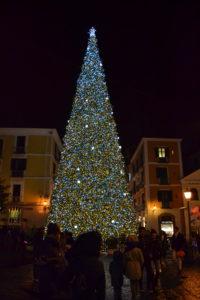 L'albero di Natale di Salerno
