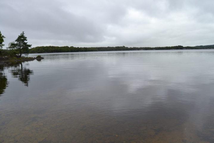 Lago del National Killerney Park